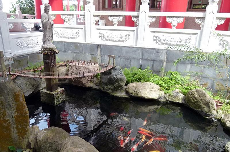龍德寺3F_龍德寺旁景觀魚池